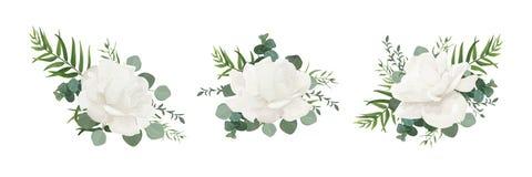 Uppsättning för blom- bukett för vektor av pulverpionen för trädgårds- vit, rosa flo stock illustrationer