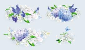 Uppsättning för bukett för vit- och blåttsommarblommor Fotografering för Bildbyråer