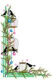 Uppsättning för fågelbur Royaltyfri Fotografi