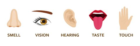 Uppsättning för fem mänsklig avkänningssymboler Tecknad filmdesignnäsa, öga, hand, öra och mun royaltyfri illustrationer