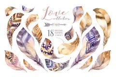 Uppsättning för fjäder för målningar för vattenfärg hand dragen vibrerande Boho stil befjädrar hjärta Förälskelseillustration som Arkivfoton