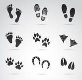 Uppsättning för fotspårvektorsymbol Royaltyfri Foto