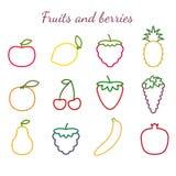 Uppsättning för frukt- och bäröversiktssymboler Stock Illustrationer