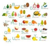 Uppsättning för fruktabc-vektor Exotiska tropiska frukter, grönsakalfabet Litchiplommon mango, rambutan, drakefrukt Royaltyfri Foto