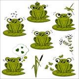Uppsättning för gröna grodor Royaltyfria Foton