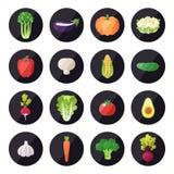 Uppsättning för grönsaksymbolsvektor Modern plan design mångfärgat Fotografering för Bildbyråer