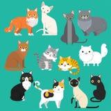 Uppsättning för husdjur för roliga avel för tecknad filmkatttecken olika gullig djur royaltyfri illustrationer