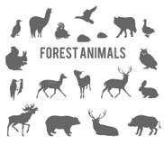 Uppsättning för konturer för skogdjurvektor Arkivbild