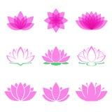 Uppsättning för Lotus blomma Royaltyfri Fotografi