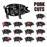 Uppsättning för mall för vektor för grisköttsnitt Arkivfoto