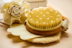 Uppsättning för omsorg av hudkroppen, badtillbehör Royaltyfri Bild