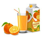 Uppsättning för orange fruktsaft Fotografering för Bildbyråer