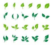 Uppsättning för sidasymbolsvektor nio element av den rena naturen stock illustrationer