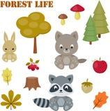 Uppsättning för skoglivsymboler Arkivfoton