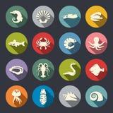 Uppsättning för symbol för havsliv royaltyfri illustrationer