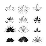 Uppsättning för symbol för Lotus blomma Royaltyfria Foton