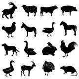 Uppsättning för symboler för lantgårddjur Royaltyfri Bild