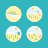 Uppsättning för symboler för vektorträdgårdlägenhet Arkivfoton