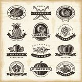 Uppsättning för tappningfrukt- och grönsaketiketter Royaltyfri Foto