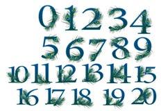 uppsättning för 0 till 20 nummer av 0 till 100 påfågelnummer Royaltyfri Bild