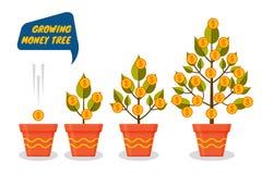Uppsättning för tillväxt för pengarträddollar Dekorativa växter i blomkrukor stock illustrationer