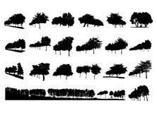 Uppsättning för trädsilhoutevektor Arkivbild