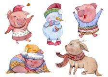 Uppsättning för vattenfärgtecknad filmtecken lyckligt nytt år Gulliga svin, snögubbe och hjortar Kinesiskt symbol av det 2019 åre royaltyfri bild