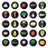 Uppsättning för vektor för grönsaksymboler stor Modern plan design Royaltyfri Bild