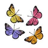 Uppsättning för vektormonarkfjärilar Vektor Illustrationer
