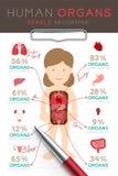 Uppsättning Infographic kvinnlig för mänskligt organ, diagram för doktorshandstilpapper med blocket stock illustrationer