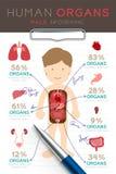 Uppsättning Infographic manlig för mänskligt organ, diagram för doktorshandstilpapper med blocket royaltyfri illustrationer