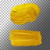 Uppsättningen av brusande texturerade borstar, guld- grund Akrylpärlamålarfärg, guld- målarfärgsudd Isolerad vektorillustration Arkivbilder