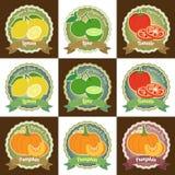 Uppsättningen av den olika ny högvärdiga kvalitets- etikettsetiketten för frukt och för grönsaken förser med märke klistermärken  Royaltyfri Foto