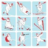 Uppsättningen av den vita björnen spelar vintersporten. Humoristiskt dåligt Vektor Illustrationer