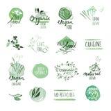 Uppsättningen av drog vattenfärgen för organisk mat handen märker och förser med märke Fotografering för Bildbyråer