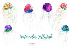 Uppsättningen av handen målade vattenfärgen buggar, vektorn Fotografering för Bildbyråer