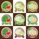 Uppsättningen av klistermärken för emblemet för etiketten för etiketten för olik ny melonfrukt den högvärdiga kvalitets- och logo Royaltyfri Foto