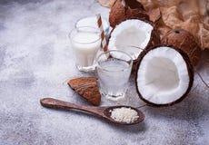 Uppsättningen av kokosnöten mjölkar, bevattnar, olja och shavings arkivfoton