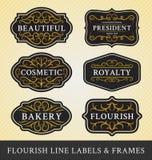 Uppsättningen av krusidullkalligrafi inramar, och etiketter planlägger Fotografering för Bildbyråer