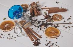 Uppsättningen av kryddor för framställning av funderat vin Royaltyfri Fotografi
