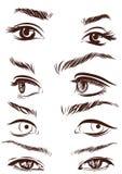Uppsättningen av kvinnaögon, kanter, ögonbryn och näsor som svart skissa planlägger beståndsdelar vektor Royaltyfria Bilder