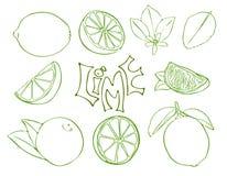 Uppsättningen av limefruktvektorsymboler skissar in stil royaltyfri illustrationer