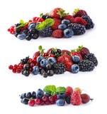 Uppsättningen av nya frukter och bär isolerade en vit bakgrund Mogna blåbär, björnbär, vinbär, hallon och strawberrie Fotografering för Bildbyråer