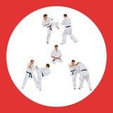 Uppsättningen av avbildar av karate royaltyfri illustrationer