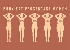 Uppsättningen av plana kvinnor bantar före och efter vektorillustrationen slank fet flicka Royaltyfri Bild