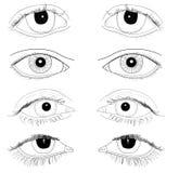 Uppsättningen av realistiska ögon räcker den utdragna linjen konstillustrationer inga påfyllningskroppsdelar Arkivbilder