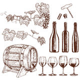 Uppsättningen av skissar vinsymboler vektor illustrationer