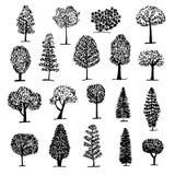 Uppsättningen av trädsymbolen, skissar stil Arkivfoto