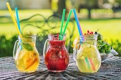 Uppsättningen av tre sommar lemonad med is och frukt som citronen, apelsinen, limefrukt och mintkaramellen spricker ut, sommardri arkivbild