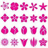 Uppsättningen av vektorn blommar symbolen och symbol Arkivfoton